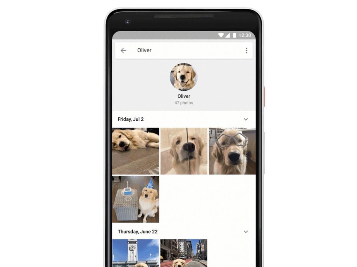 Google Fotoğraflar, Artık Evcil Hayvanlarınızı Tanıyor