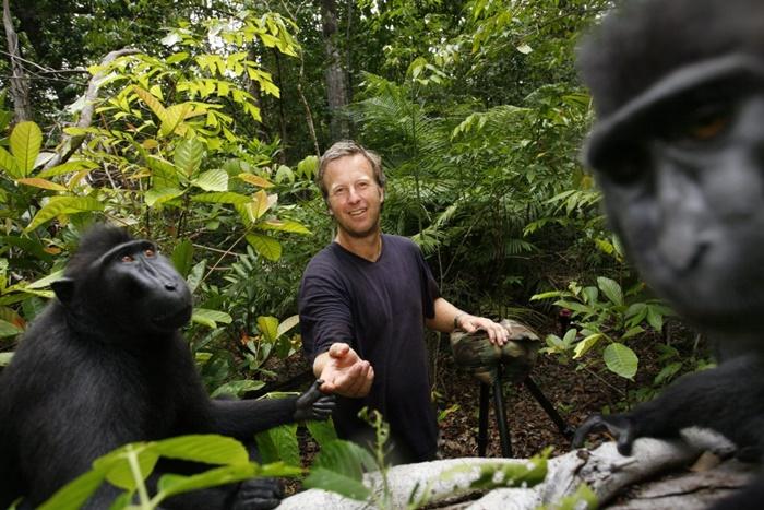 David Slater Monkey Selfie