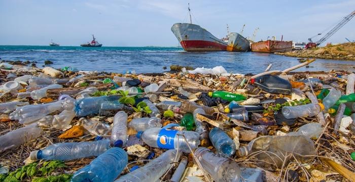 plastik atık enzim