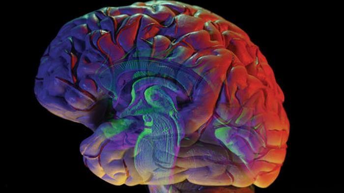 Beyin veri toplama