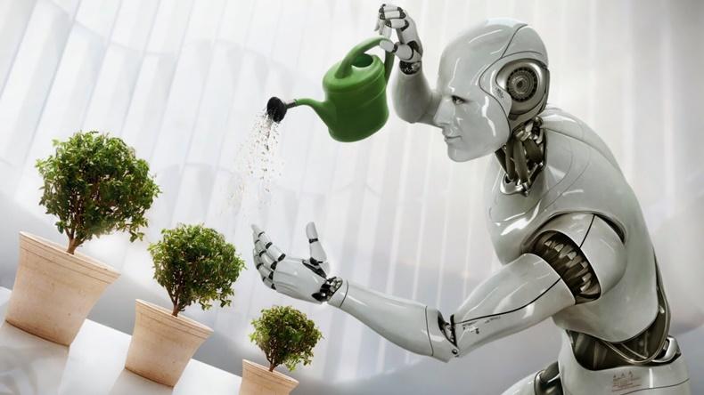 robots human