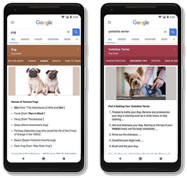 Google dynamics suggestion