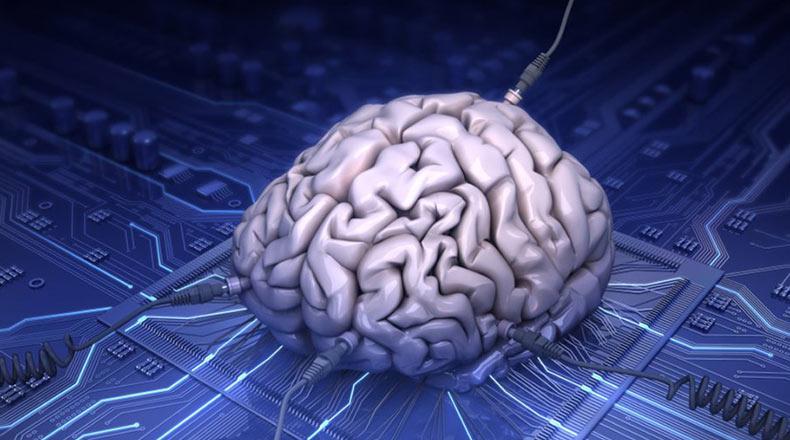 Laboratuvar Ortamında Mini Beyinler Üretildi 2