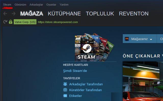 Steam nasıl Türkçe yapılır 2019