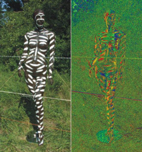 vücut boyama sinek 1