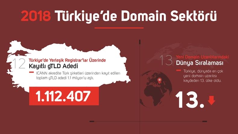 domain sektörü