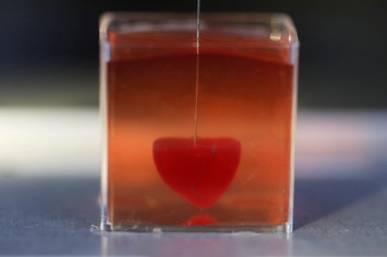 yapay kalp 3d yazıcı 1