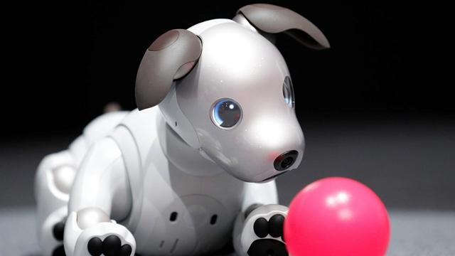 Soıny Aibo Akıllı Köpek