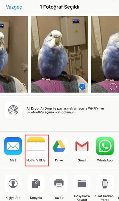 iOS'ta fotoğrafı notlara ekleme