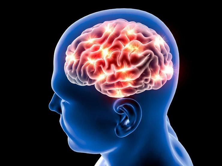 İnsan Beyni Bir Cisimle Nereye Dokunduğumuzu Algılayabiliyor