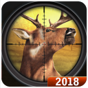 Safari Deer Hunt 2018