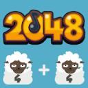 2048 BEAT