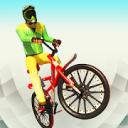 Real BMX Stunts