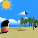 Volley Beach