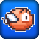 Clumsy Bird Pig