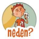 5N1K: Neden?
