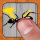 Karıncalara Ölüm