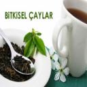 Bitkisel Şifalı Çaylar