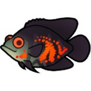 Goldfish Aquarium