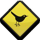 Küçük Kuşlar Teması