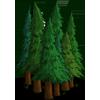 Ormanlar Teması