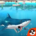 Shark Shark Run
