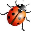 Weather Beetle