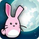Bunny To The Moon