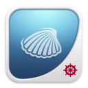 DenizBank Deniz Kabuğu