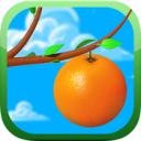 OrangeBall