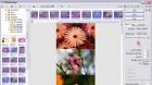 PhotoScape - Resim Birleştirme