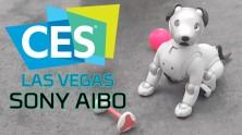 Akıllı Köpek Sony Aibo ile Buluştuk! - CES 2018 Özel