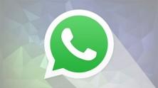 WhatsApp Emojileri ve Aramalarda İnternet Kullanımı Düşürme