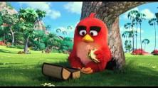 Angry Birds Filmi 2016'da Vizyonda, İlk Fragman Yayınlandı