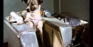 Tarihte Bugün: Uzaya İlk Canlı Gönderildi