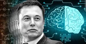 Elon Musk'tan Yapay Zekaya Karşı Hayatta Kalma Formülü