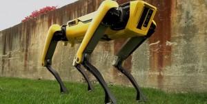 Boston Dynamics'in Yeni Elektrikli Robot Köpeği İle Tanışın