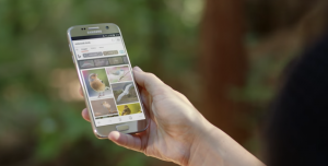 Microsoft Edge, Android ve iOS İçin İndirilmeye Hazır!
