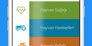 HaySag