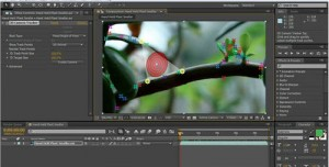 Adobe After Effects Creative Suite (CS) 6