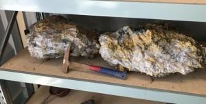 Yerbilimcileri Şaşırtan 30 Milyon Liralık Altın Külçeleri Bulundu