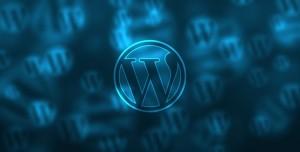 Bir Sitenin Kullandığı WordPress Temasını Öğrenme