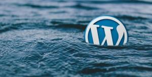 Ücretsiz Bir WordPress Eklentisi Kullanırken Dikkat Edilmesi Gerekenler