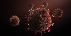 MIT: Koronavirüste Karantina Önlemleri Gevşetilirse Felaket Olur