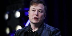 Elon Musk'ın Neuralink Şirketi Domuz Beynine Çip Yerleştirdi