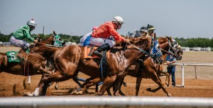 Atı Kırbaçlamak Daha Hızlı Koşmasını Sağlamıyor