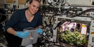 NASA Astronotları Uzay İstasyonunda Turp Yetiştirdi