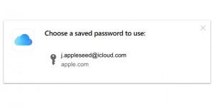 iCloud Passwords