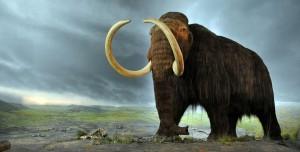 1,2 Milyon Yıllık Dünya'nın En Eski DNA'sı Keşfedildi