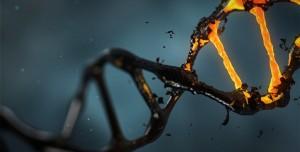 Uzmanlardan Uyarı: Biyoteröristler Ölümcül Virüsler Üretebilir!